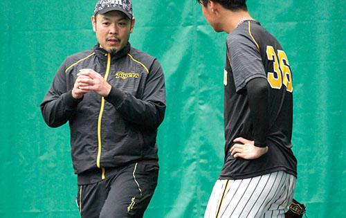 阪神タイガース臨時コーチ